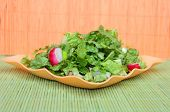 Green salad with radish and cucambres