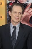 LOS ANGELES - MAR 11:  Steve Buscemi arrives at the World Premiere of