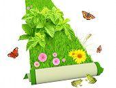 Tapete com flores e grama verde brilhante. Isolado sobre o branco