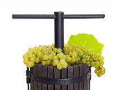 image of wine-press  - Traditional manual pressing utensil full of white grape - JPG