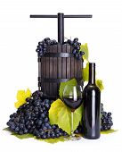 foto of wine-press  - Traditional manual grape pressing utensil with red wine and blue grape bunch - JPG