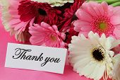 Thank you note and colorful gerbera daisies