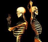 Skull Duo