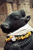 Statue of Nandi Bull at Hindu Temple