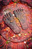 Buddha feet with offerings. Nepal