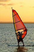 Backlit wind surfer at sunset on calm coastal water