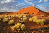 Landscape with desert grasses, large sand dune and sky with clouds, Sossusvlei, Namibia, southern Af