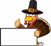 image of fowl  - A cartoon illustration of a Thanksgiving Turkey character - JPG