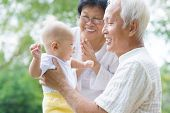 stock photo of grandparent child  - Happy Asian grandparents playing with baby grandchild at outdoor garden - JPG