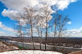 Landscape Of The Birch Trees Group And River Belaya In Ufa, Bashkortastan, Russia