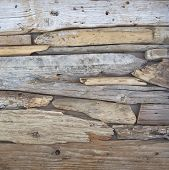 foto of wood pieces  - twigs and wood pieces closeup - JPG