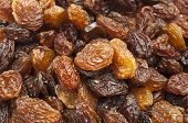 raisins closeup