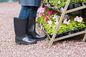 gardener wearing gumboots working in nursery