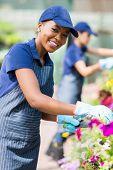 beautiful african american female florist working in nursery