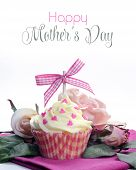 Mothers Day Pink Cupcake with Sample Text