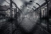 foto of auschwitz  - Electric fence in former Nazi concentration camp Auschwitz I - JPG