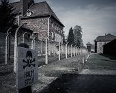 image of nazi  - Electric fence in former Nazi concentration camp Auschwitz I - JPG
