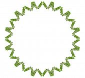 Laurel Abstract Wreath made by fresh Green leaves isolated