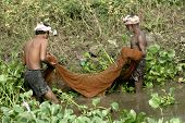Fishermen catch fish with net in the irrigation canal