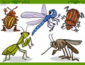 image of potato bug  - Cartoon Illustration of Happy Insects or Bugs Set like Dragonfly or Mosquito and Mantis - JPG