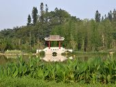 Chinese city park pavilions and bridges