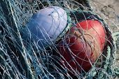 Fishing Net-2, Close-up