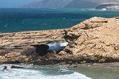 Rock Arch, Fuerteventura