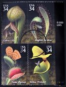 UNITED STATES OF AMERICA - CIRCA 2001: Stamps printed in USA dedicated to Carnivorous Plants