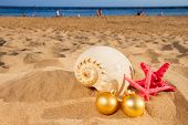 shells and christmas decorations  on beach
