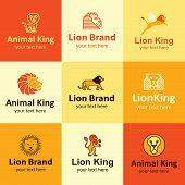 Lion Icons Vector Set