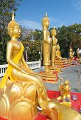 Statues on Big Buddha's hill
