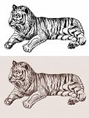 original artwork tiger, black sketch drawing animal