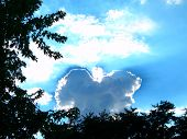 foto of blue angels  - An angel made of clouds floating in the blue sky above trees - JPG