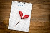autumn background with notebook on a wooden