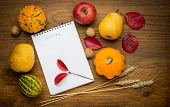 Autumn background with notebook, agriculture harvested products on wooden