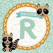 Abc Animals R Is Raccoon. Childrens English Alphabet.