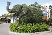 Entrance to San Diego Zoo with an elephant topiary