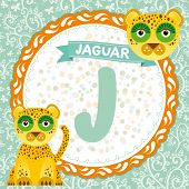 Abc Animals J Is Jaguar. Childrens English Alphabet. Vector