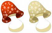 Cute Cartoon Mushroom - Isolated On White