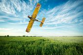 image of pesticide  - crop duster airplane flies low over a wheat field spraying fungicide and pesticide - JPG