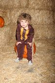 LOS ANGELES - OCT 4:  Ocean Maturo at the RISE of the Jack O'Lanterns at Descanso Gardens on October 4, 2014 in La Canada Flintridge, CA