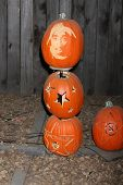 LOS ANGELES - OCT 4:  Tupac Shakur Carved Pumpkin at the RISE of the Jack O'Lanterns at Descanso Gardens on October 4, 2014 in La Canada Flintridge, CA