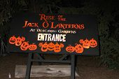 LOS ANGELES - OCT 4:  Atmosphere at the RISE of the Jack O'Lanterns at Descanso Gardens on October 4, 2014 in La Canada Flintridge, CA