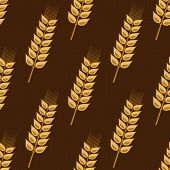 Seamless pattern of cereal golden wheat ears