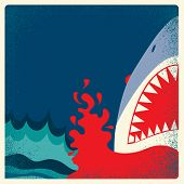 Shark Jaws Poster.vector Danger Background