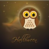 Horrible night scene with scary owl and stylish text Halloween.