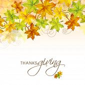Colorful maples leaves decorated poster, banner or flyer design for Thanksgiving Day celebrations.
