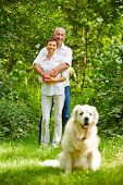 Senior couple with golden retriever dog as a pet in their garden