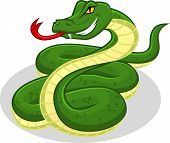 picture of anaconda  - This image is a snake in cartoon illustration - JPG