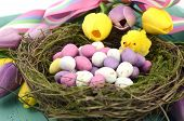 Happy Easter Background With Painted Easter Eggs In Birds Nest, And Yellow And Purple Silk Tulips An